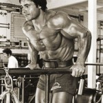 Chest Training Dips Triceps