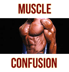 Muscle Confusion Myth