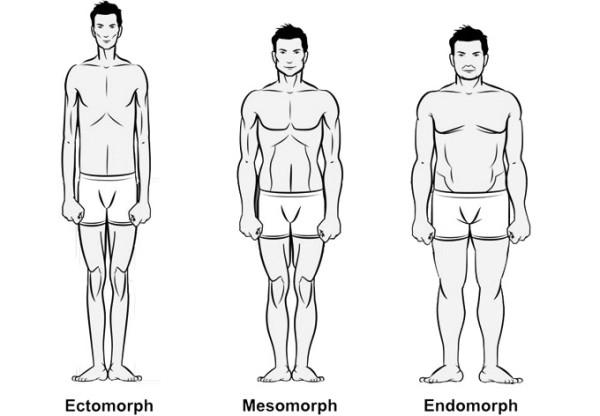 Body-types-600x416