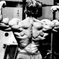 Arnold Back Workout