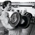 arnold-cheat-curls4