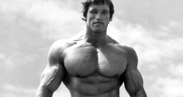 Arnold Chest