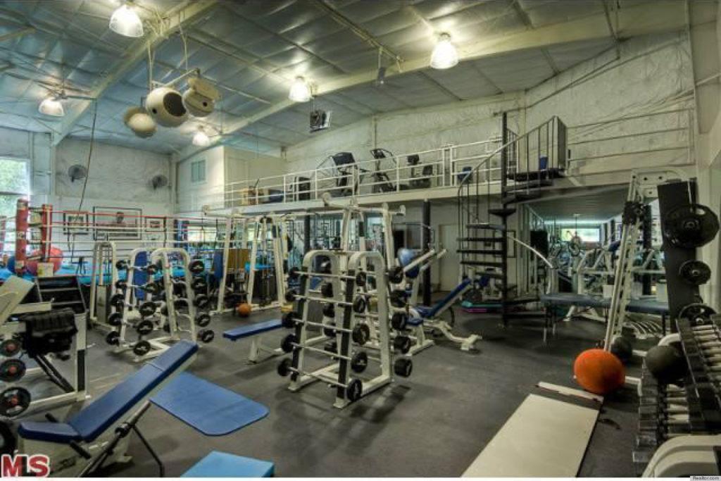 mark-wahlberg-home-gym