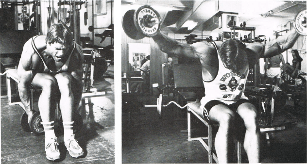 arnold-lateral-raises