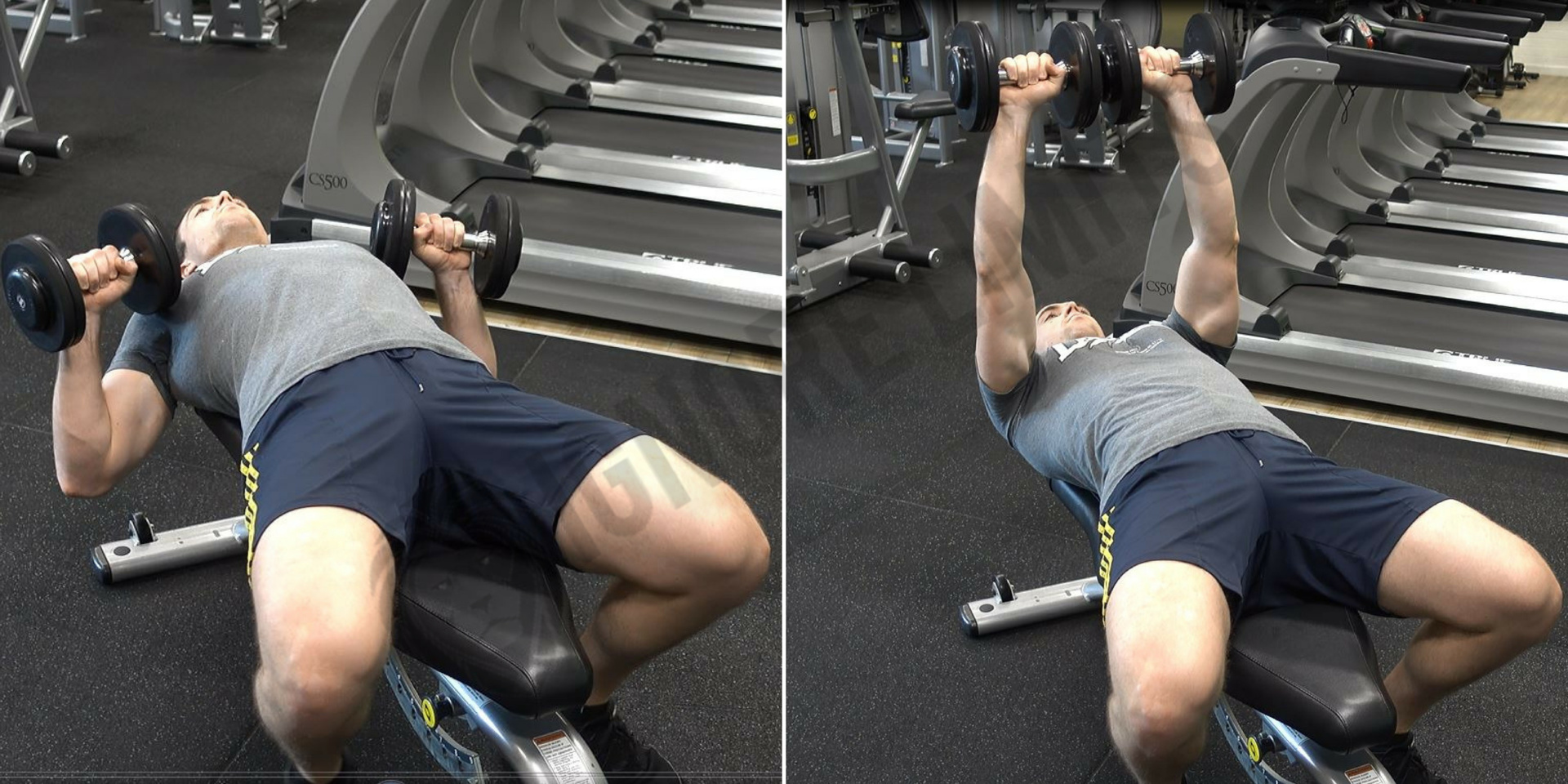 How To: Dumbbell Bench Press - Ignore Limits