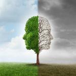 Contrast-Misreaction Tendency Bias