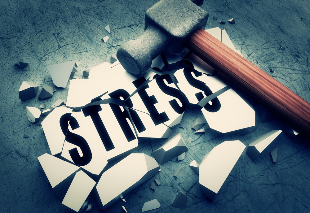 stress-bias