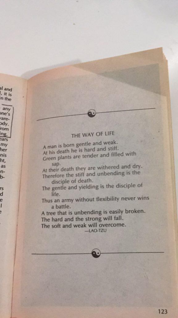 zen-in-the-martial-arts-review