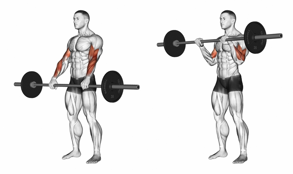 Barbell Curl Grip Variations - Ignore Limits