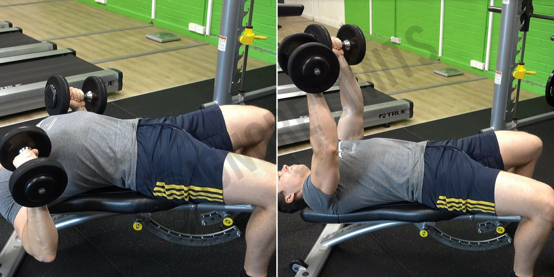 How To: Decline Dumbbell Bench Press - Ignore Limits