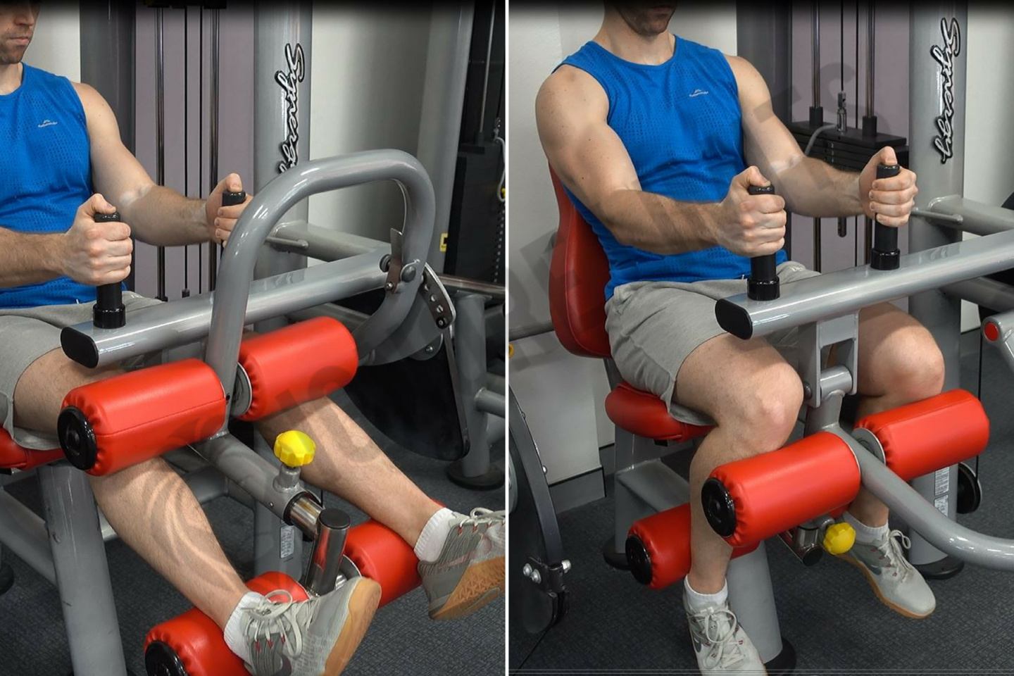 Image result for Seated Leg Curl