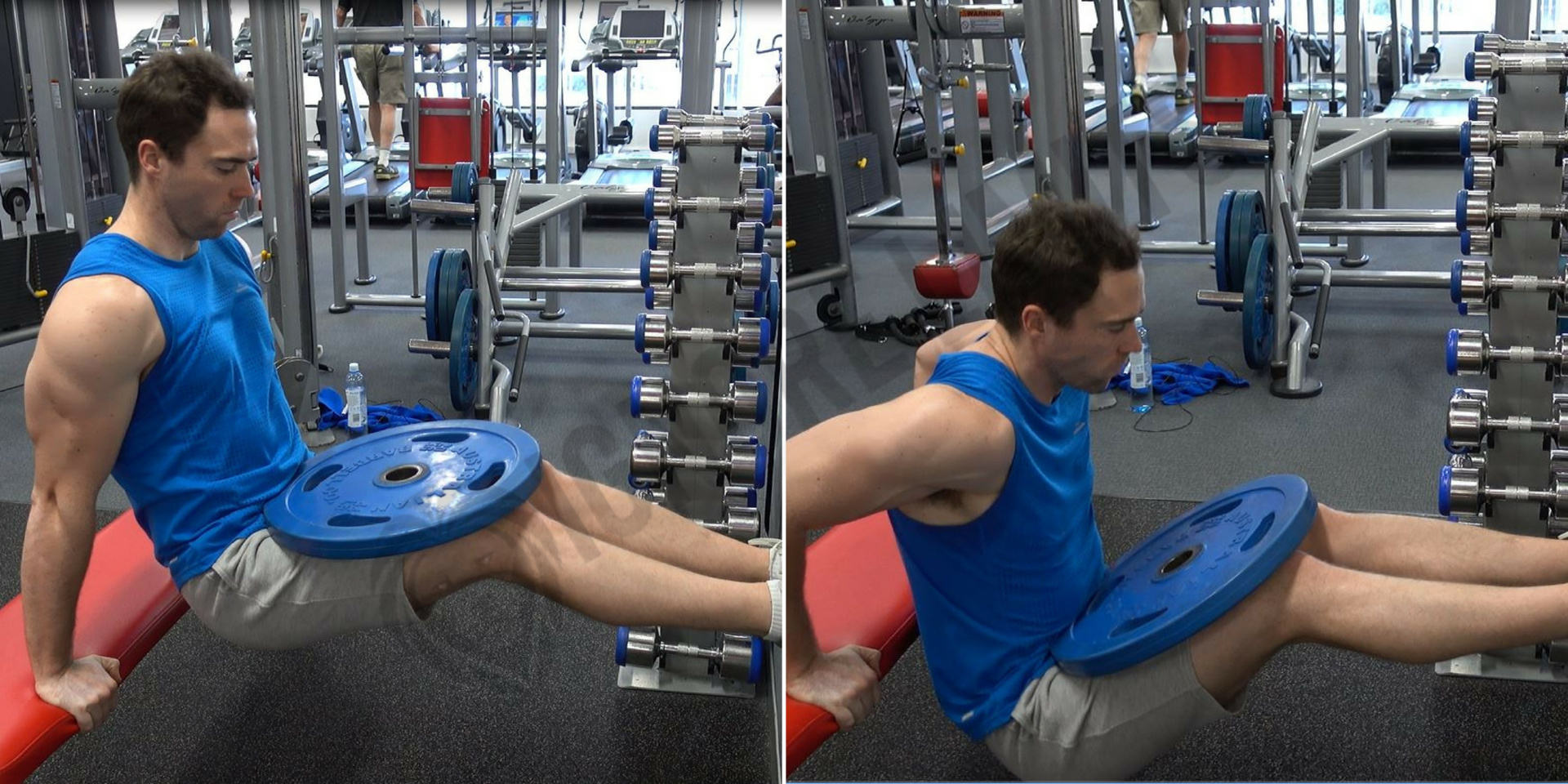 Cool How To Weighted Bench Dips Ignore Limits Pdpeps Interior Chair Design Pdpepsorg