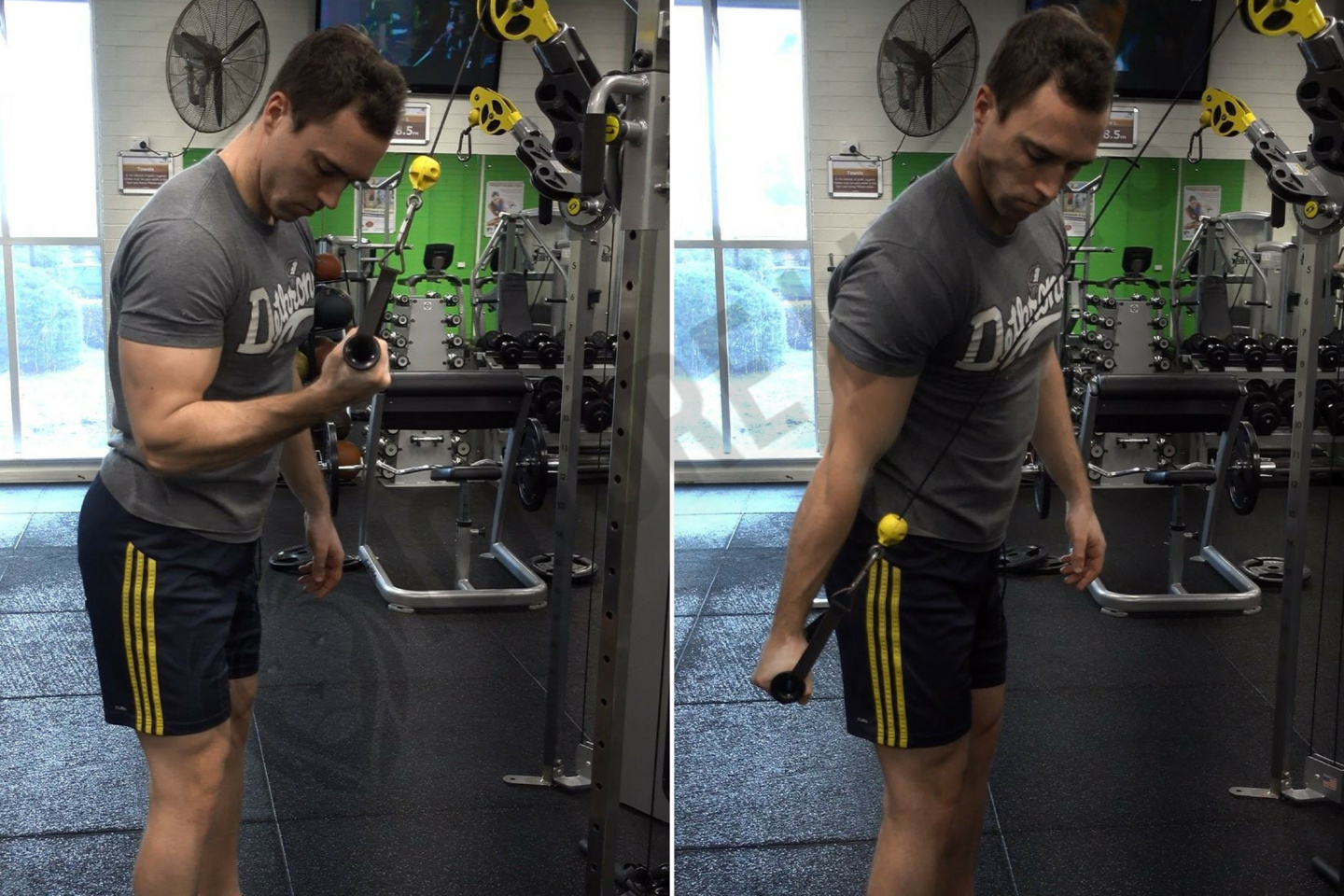 How To Cable One Arm Tricep Extension Ignore Limits