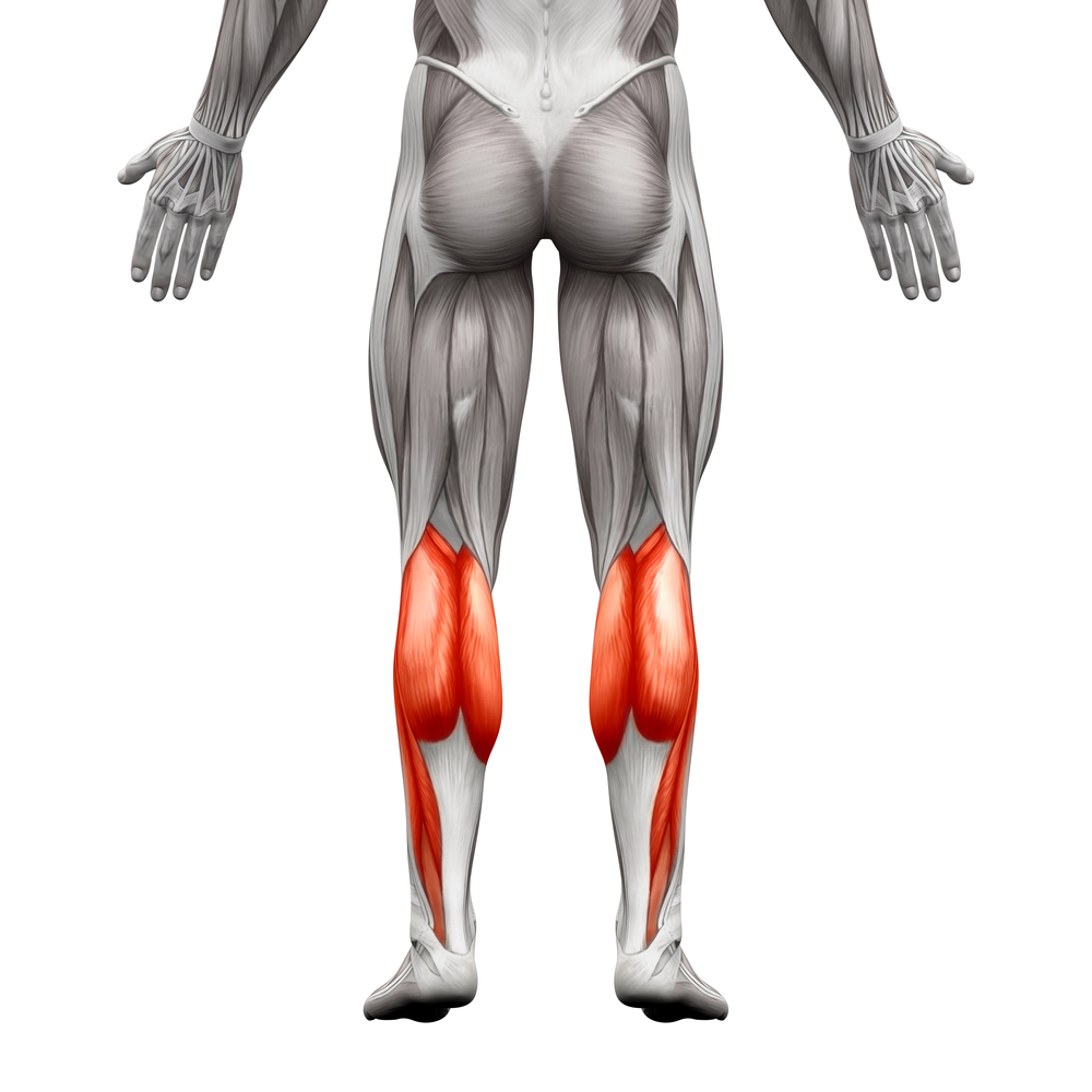 Foot Position On Calf Raises Explained Ignore Limits